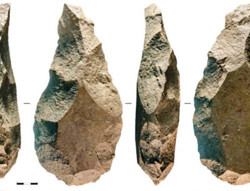 Os primeiros homínidos de Galicia xa eran mineiros